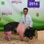 Local 4-H participant Wesley Russell is pictured with his pig Montana State University purchased at the recent Gallatin County Fair. Submitted photo.