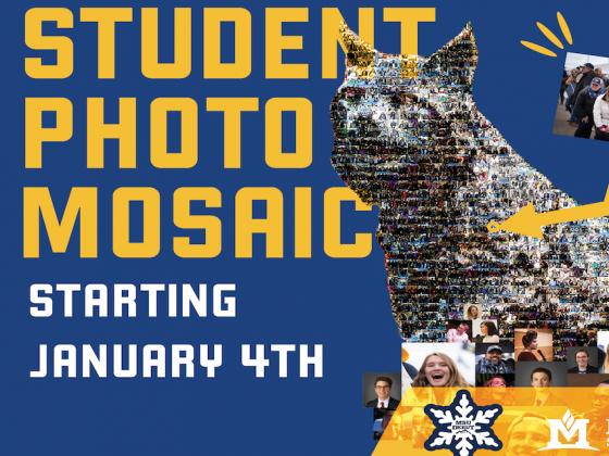 Student Photo Mosaic  