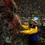 woman in hardhat and rain jacket examines large rock with tailings pile in background