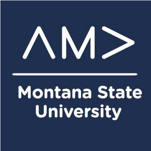MSU AMA logo