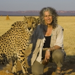 Laurie Marker is the founder and director of the Cheetah Conservation Fund. She has been travelling to Africa for cheetah conservation for decades. In 1977, during her first trip to Namibia, she arrived with a captive-born cheetah and proceeded to do groundbreaking research on the process of reintroducing captive-born cheetahs to the wild. Photo by Suzi Eszterhas.