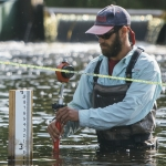 Civil Engineering Field Research on Grayling in Big Hole River