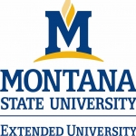 Extended University color logo