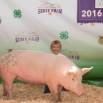 Local 4-H participant Cannon Ireland is pictured with his pig Montana State University purchased at the recent Gallatin County Fair. Submitted photo.