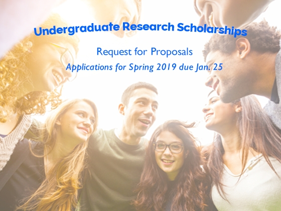 Spring Undergraduate Scholarship Request for Proposals are due Jan. 25; Open to all Disciplines