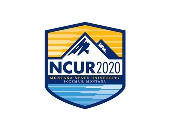 NCUR 2020 |
