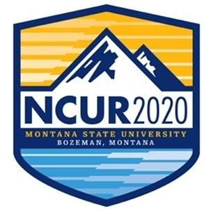 NCUR 2020