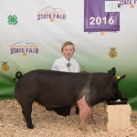 Local 4-H participant Hutch Herron is pictured with his pig Montana State University purchased at the recent Gallatin County Fair. Submitted photo.