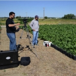 Bryan Scherrer, left, a doctoral student in MSU�s Department of Electrical and Computer Engineering, and Vipan Kumar, postdoctoral research scientist at MSU�s Southern Agricultural Research Center, perform hyperspectral imaging of kochia strains in a sugar beet field at SARC in Huntley, in summer 2016.