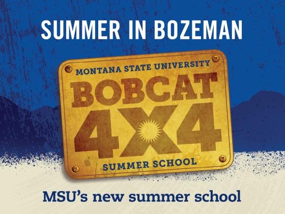 Bobcat 4x4 - MSU's new summer school