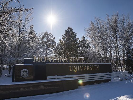campus winter | MSU photo by Kelly Gorham