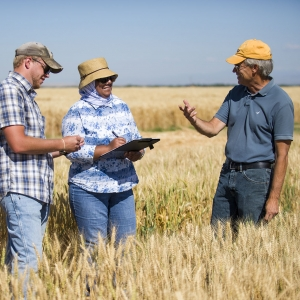 Montana State University agriculture professor Luther Talbert works with students at the Post Farm experiment station in Bozeman.