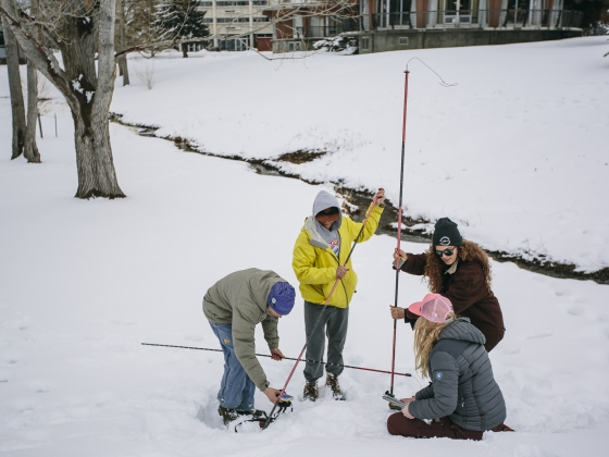 A group of students searching for a buried avalanche beacon. | MSU photo by Adrian Sanchez-Gonzalez