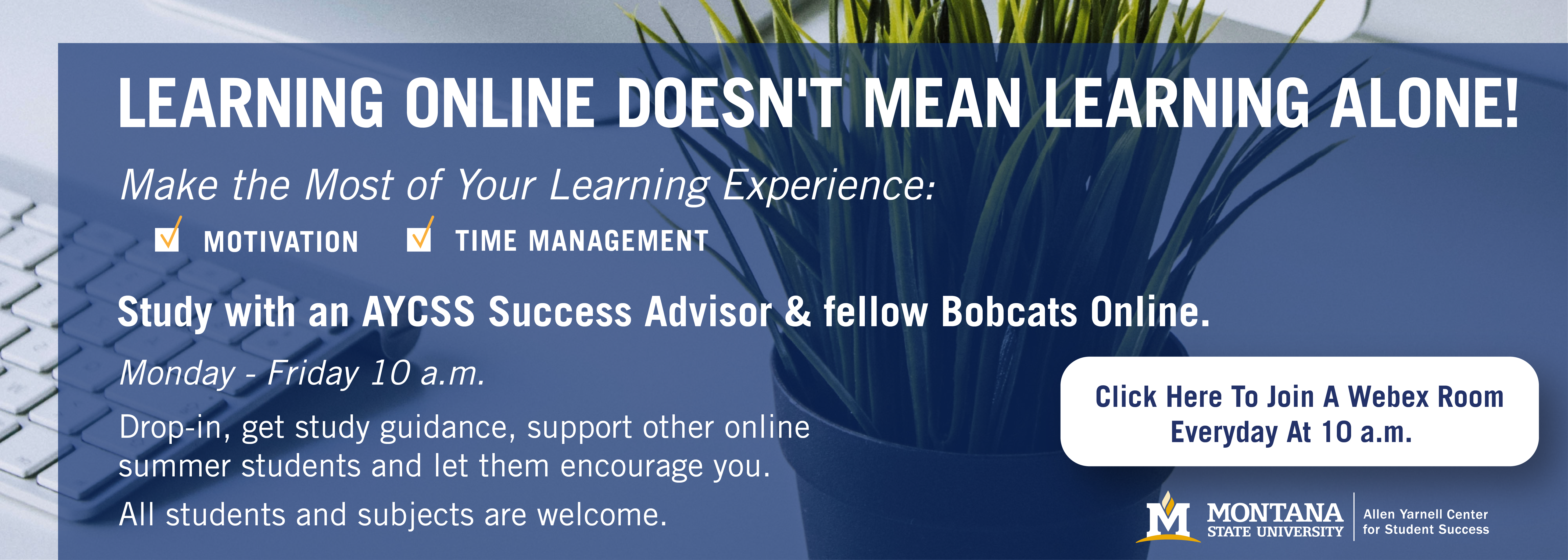 """""""Learning Online Doesn't Mean Learning Alone""""  Study with an AYCSS Success Advisor and your fellow Bobcats Online. Monday - Friday 10 a.m. Drop-in, get study guidance, support other online summer students and let them encourage you. All students and subjects are welcome.  Click here to join every day at 10 a.m.: Webex room here_"""