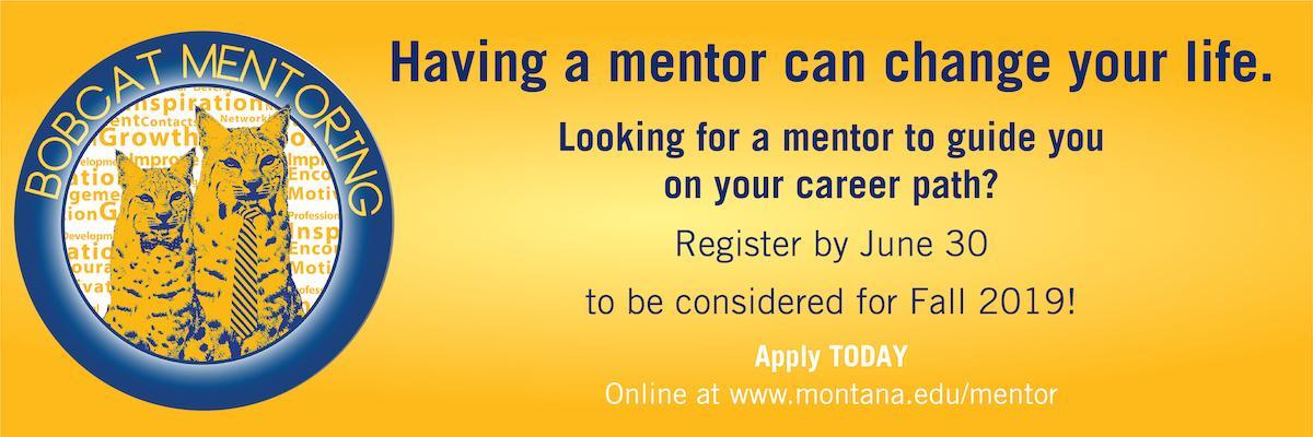 Having a mentor