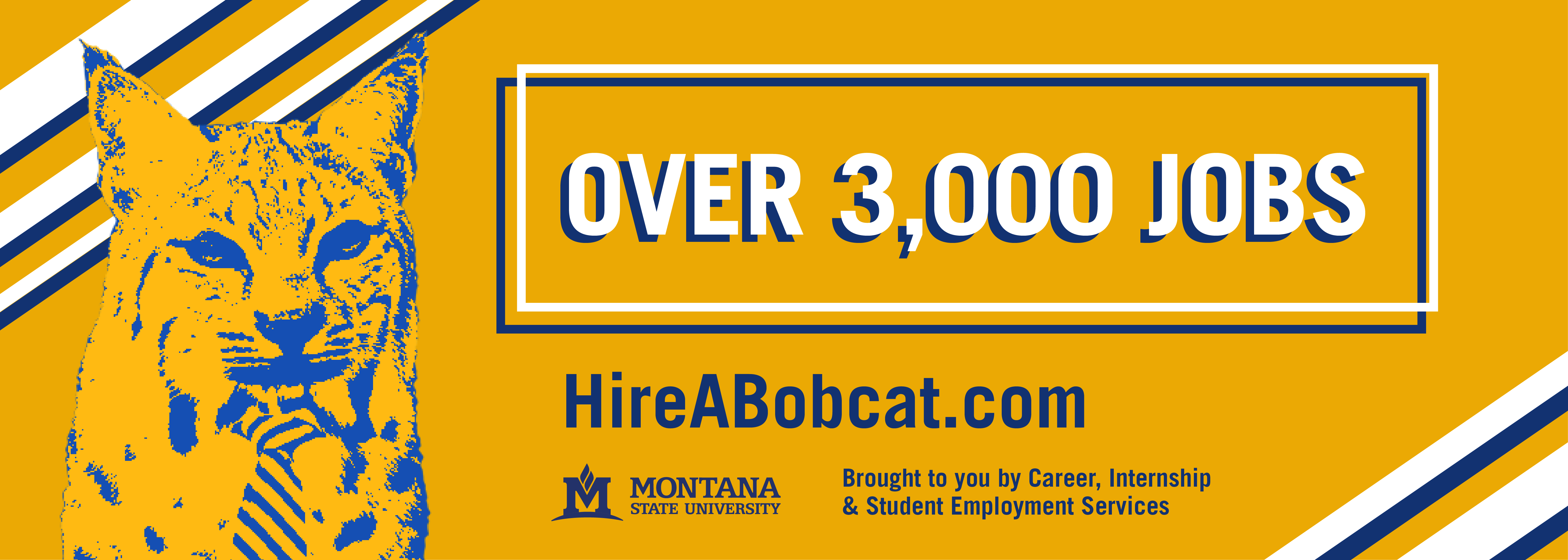 Over 3,000 Jobs. Hireabobcat.com. Brought to you by career, internship, and student employment services