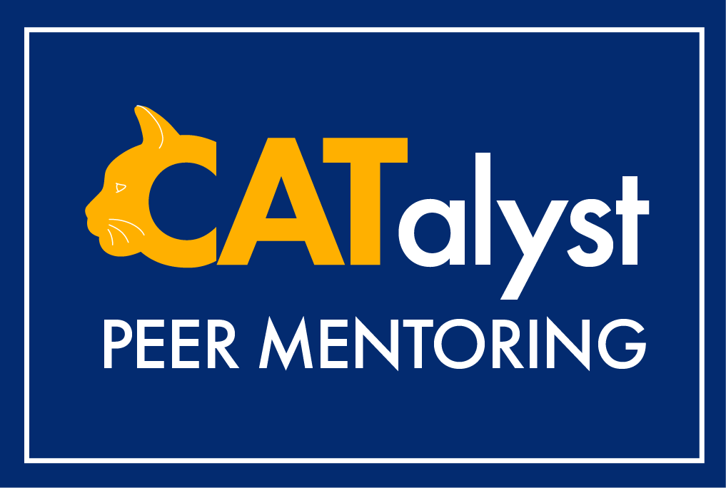 catalyst peer mentoring