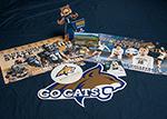 Bobcat Kits