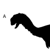 These are the types of animals whose fossils were found at the Robison Bonebed. All except the fish-eating theropod and fish are to scale. The silhouette of a human paleontologist (center) indicates approximate scale. (Image courtesy of L.J. Krumenacker).