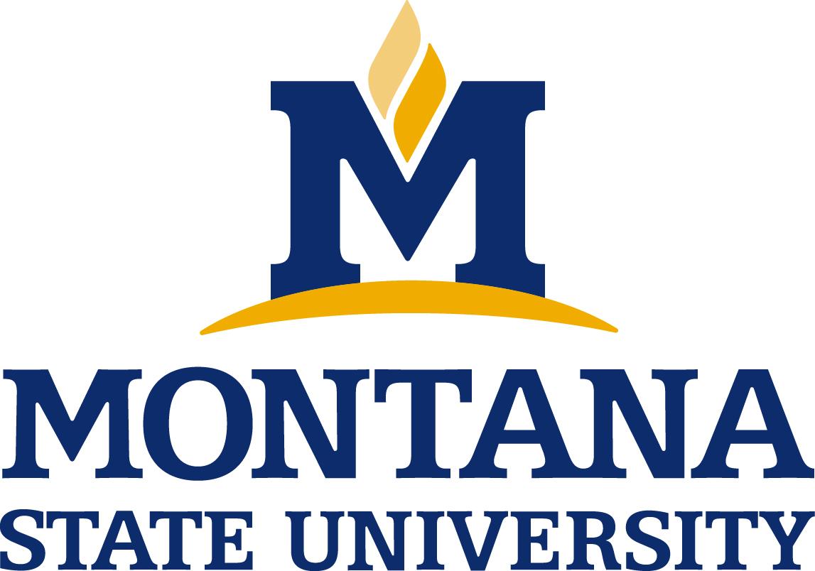 MSU logo University Logo Vector