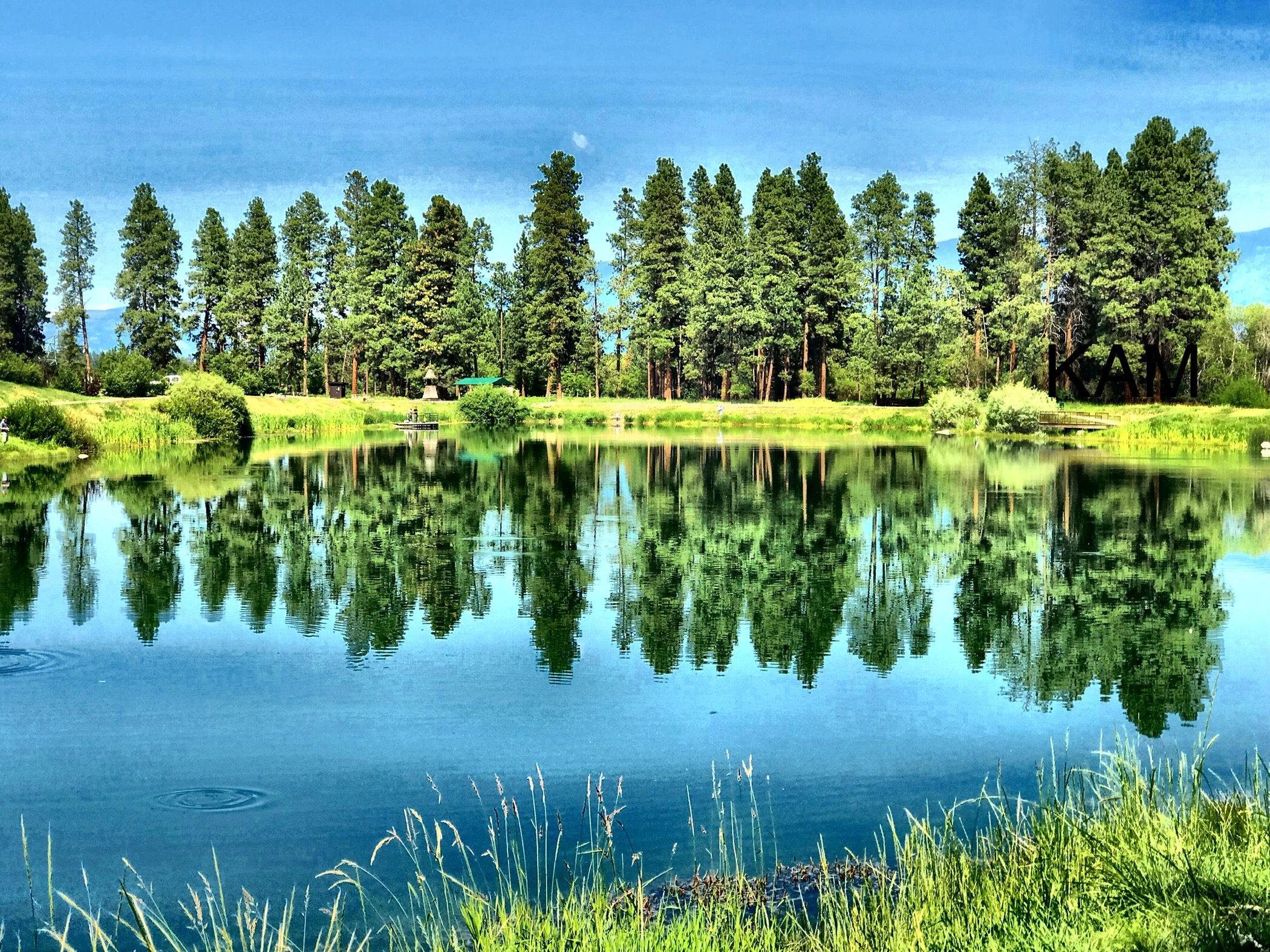 Photo of a lake and trees