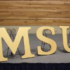 Image of MSU letters.