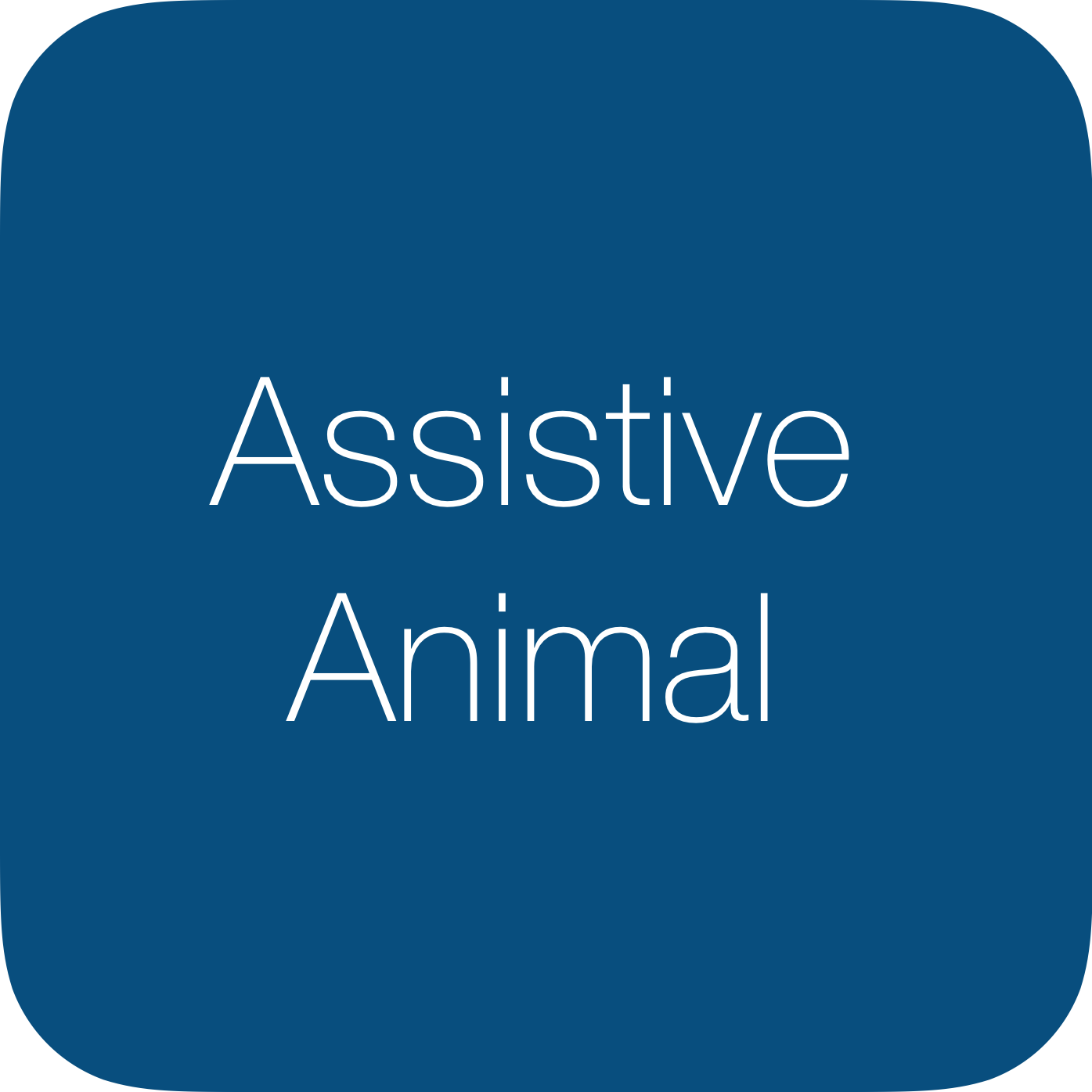 Assistive Animal Policy