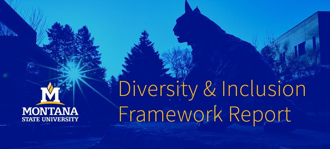 Diversity & Inclusion Framework Report