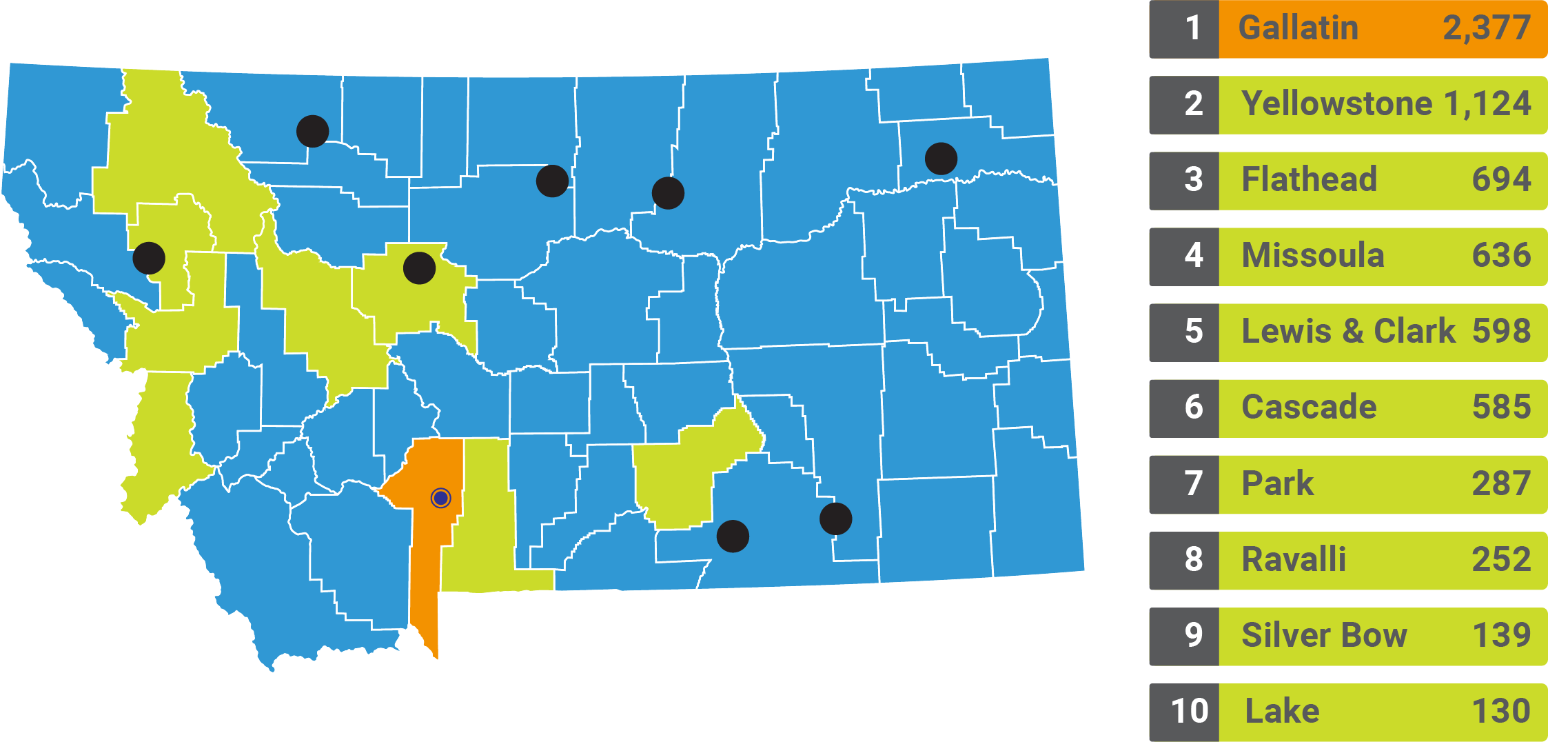 Graphic of the state of Montana showing that MSU students come from 54 out of 56 Montana counties and all 8 Montna Tribal nations with the top 10 counties being Gallatin (2,377), Yellowstone (1,124), Flathead (694), Missoula (636), Lewis and Clark (598), Cascade (585), Park (287), Ravalli (252), Silver Bow (139) and Lake (130).