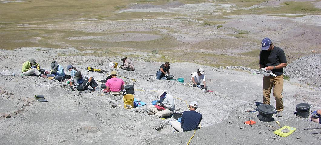 Paleontology students hard at work at the digsite
