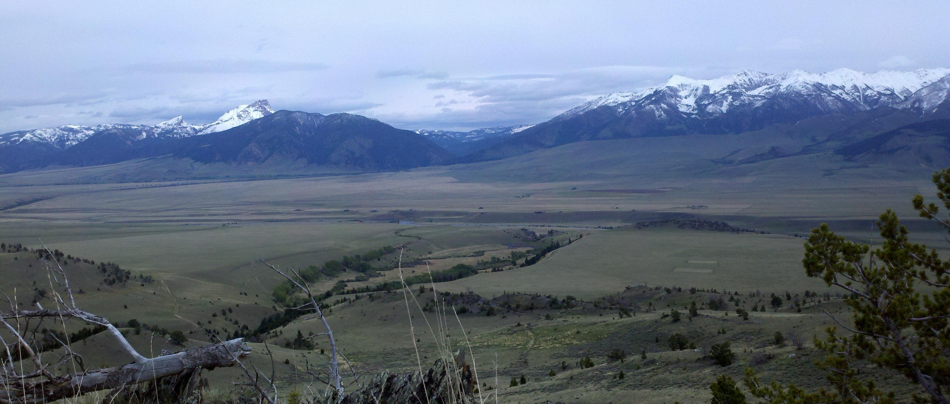 Madison Range Vista