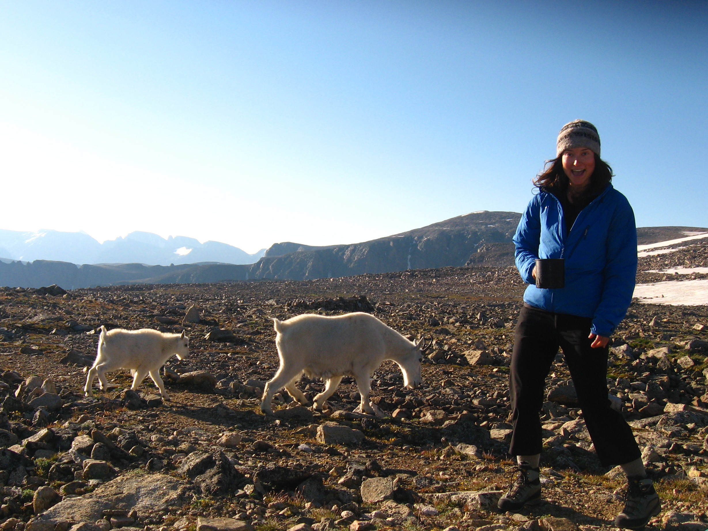 Shannon on mountain top with two baby goats