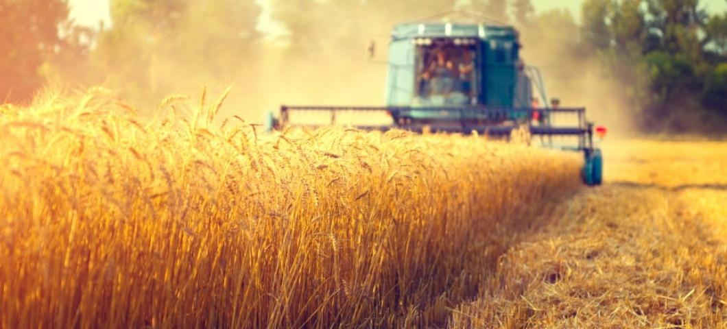 2019 Agriculture in a Global Context Course-China