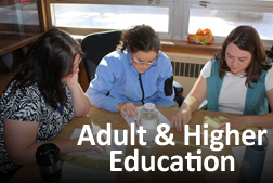 adult and higher education