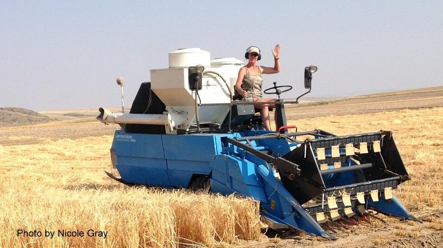 female driving farm equipment in crop field waving