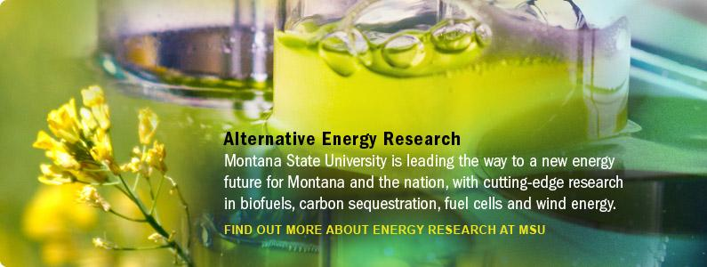 Alternative Energy Research 