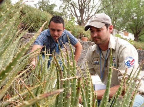 Peace Corps picture of two men looking at a plant