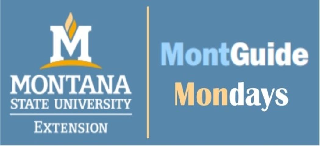MontGuide Mondays Webinar Series Ended on February 22