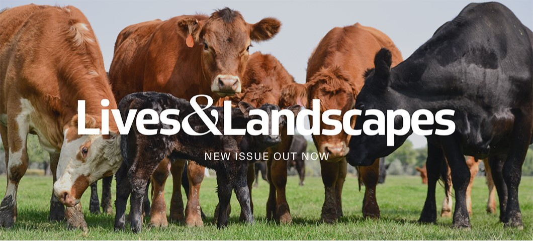 Lives and Landscapes Current Issue