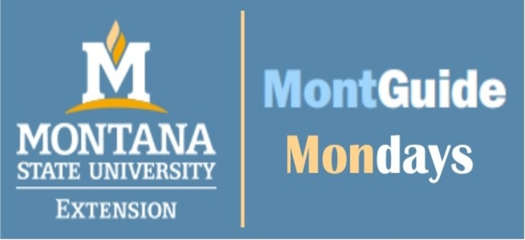 MontGuide Mondays offers Montanans a chance to discuss and learn about estate and legacy planning. This series is similar to a book club.  First, read a few MSU Extension MontGuides and then enter a discussion online with others about the content.  All sessions will be held from 10:00 AM - 11:00 AM.