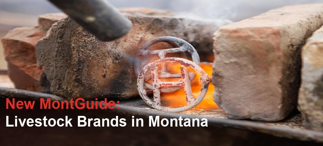 New MontGuide: Livestock Brands in Montana