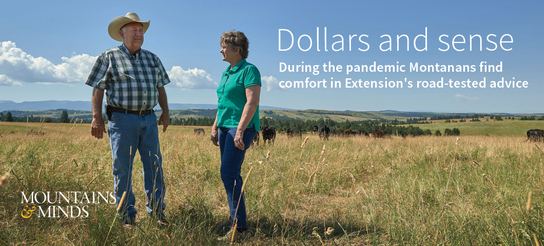 Montanans find comfort in MSU Extension experts' road-tested advice