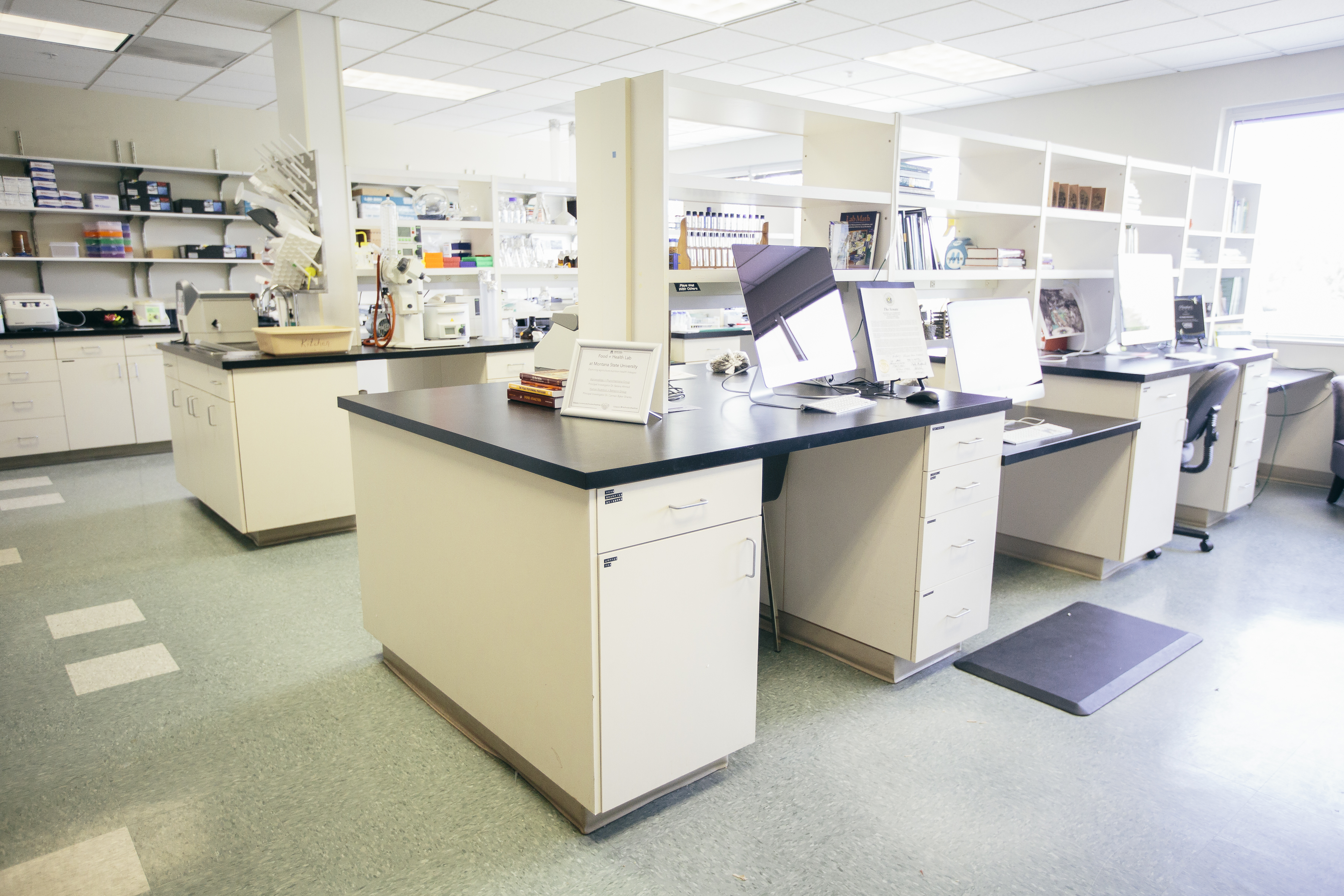 Inside Food and Health Lab