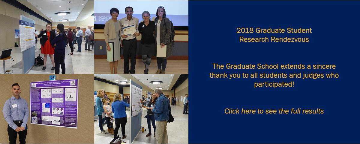 Research Rendezvous Collage