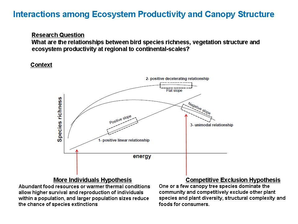 relationship between species richness and productivity tools
