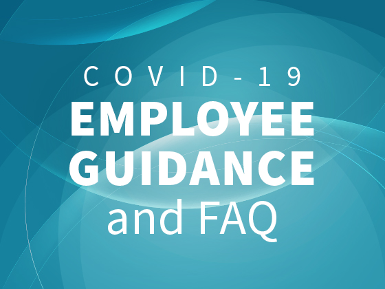 Employee guidance and FAQ, text on colored background