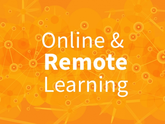 Online and remote learning resources