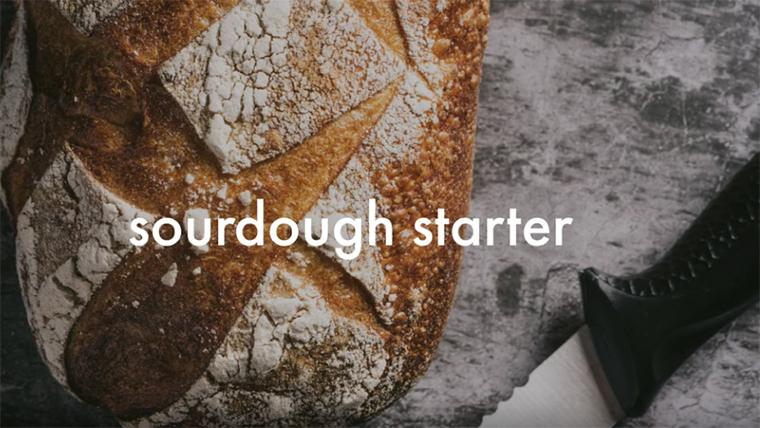Asst. Teaching Professor Marcy Gaston explains how to make a sourdough starter