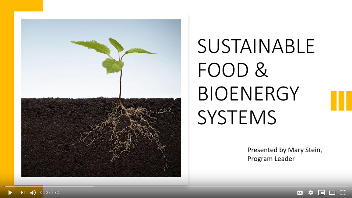 Sustainable foods and bioenergy systems video