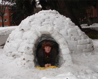 montana state university honors igloo